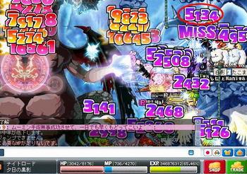 Maple080608_02.jpg